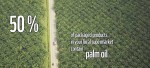 Support the sustainable production of palm oil
