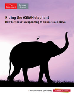 Riding the ASEAN elephant report