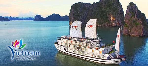Promoting tourism in Vietnam - ASEAN UP