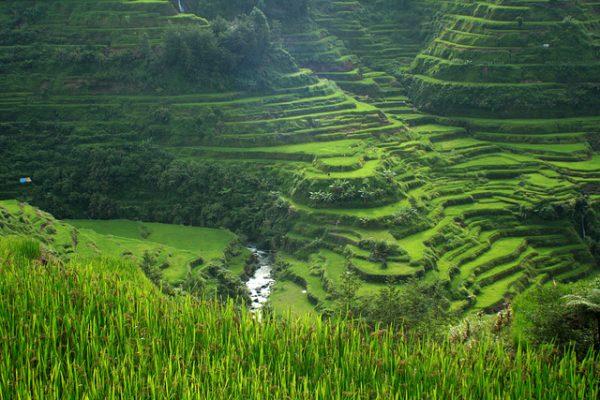 Cordilleras Rice Terraces, Philippines