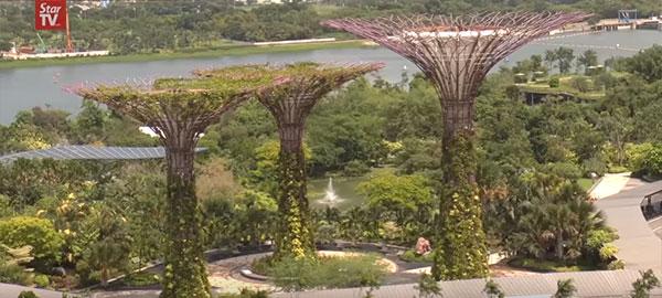 Singapore business trip ideas