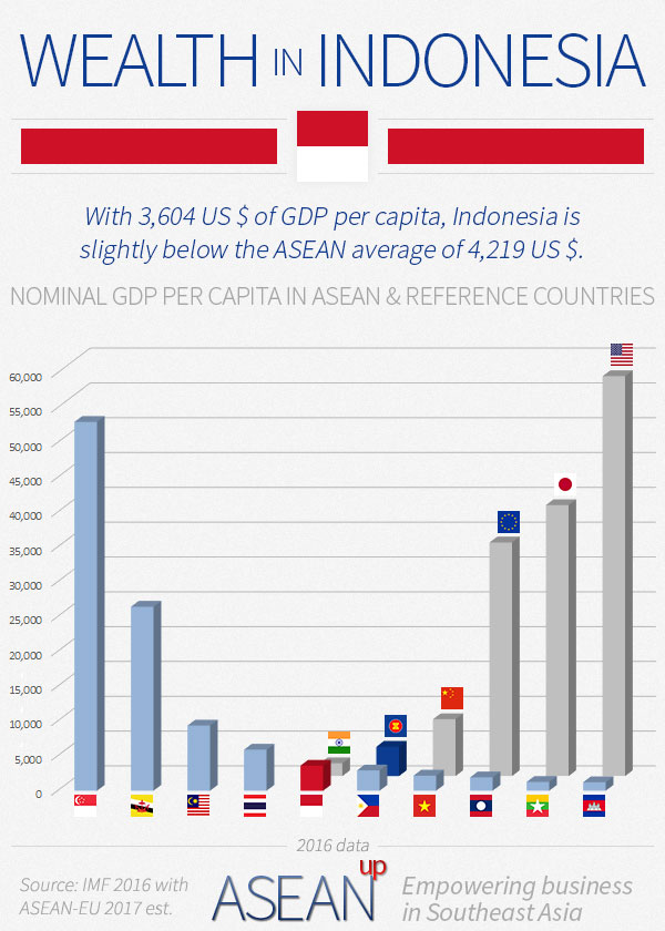 Indonesia wealth infographic