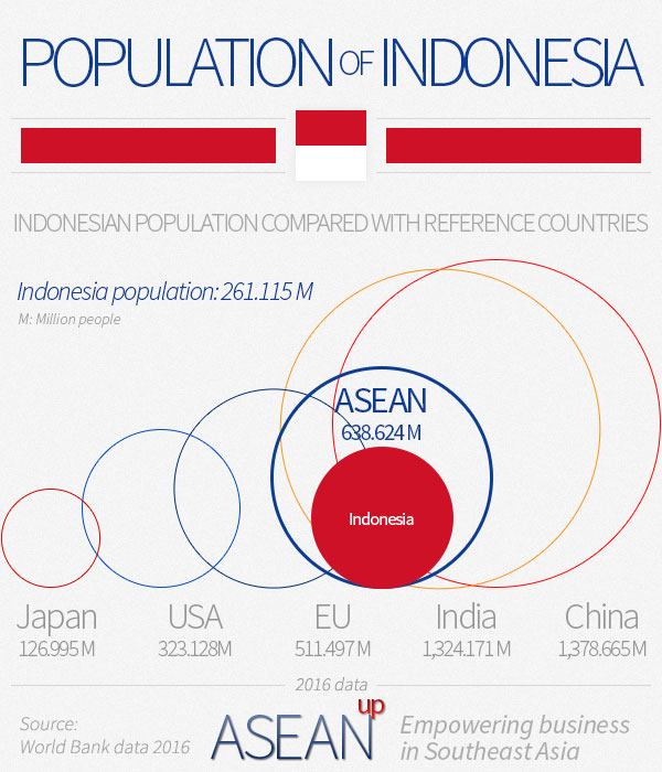 Indonesia population infographic