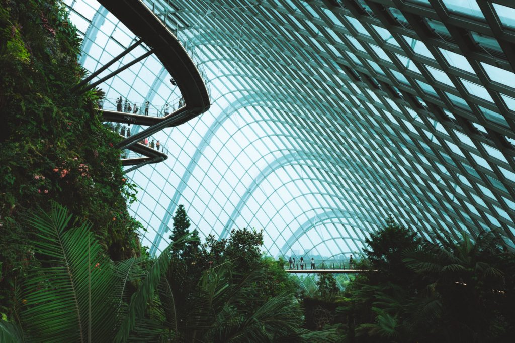 Gardens by the bay catwalk