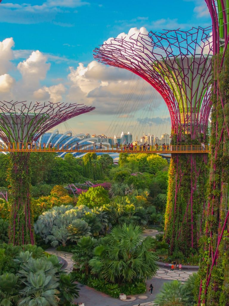 Gardens by the bay trees