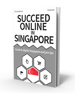 Succeed online in Singapore – eBook 3D